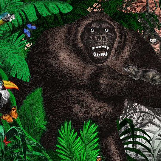 Kristjana S Williams | The Amazon Rain Forest Giant Gorilla | Artist | Art prints | Modern & Contemporary Art and Interiors