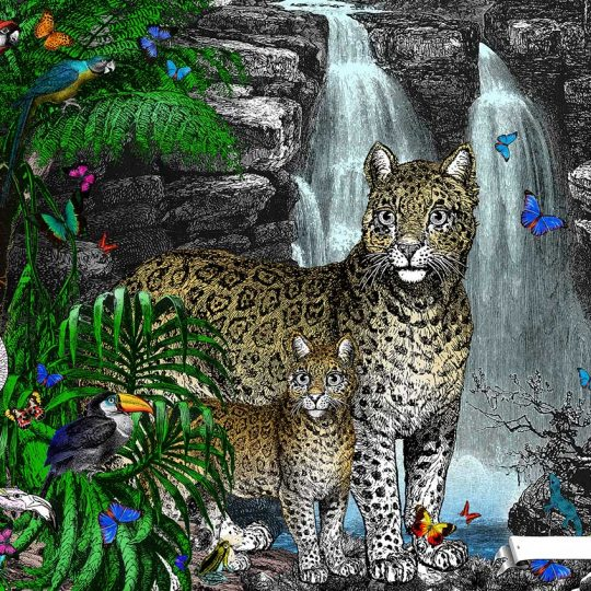 Kristjana S Williams | The Amazon Rain Forest Jaguar Panthera and her Cub | Artist | Art prints | Modern & Contemporary Art and Interiors