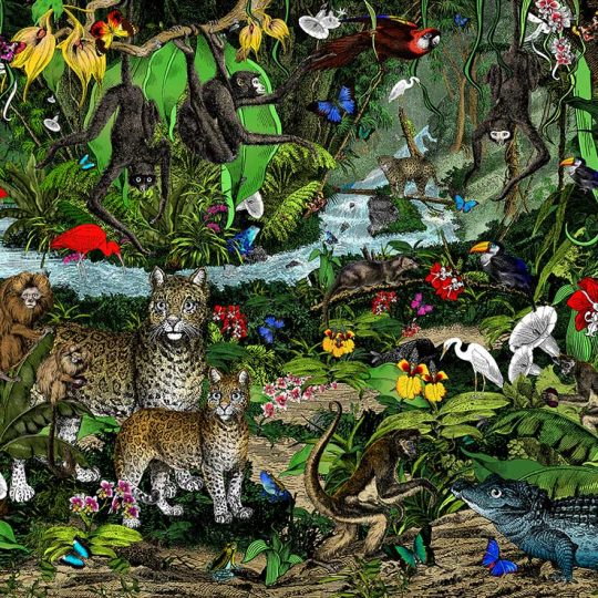 Kristjana S Williams | The Amazon Rain Forest - World's Zoological Jewel | Artist | Art prints | Modern & Contemporary Art and Interiors