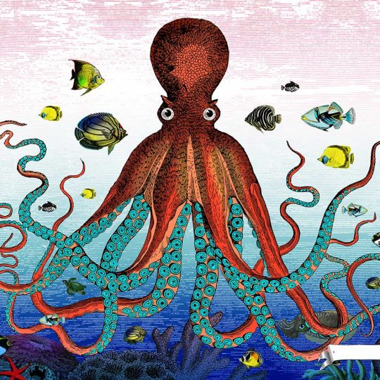 Kristjana S Williams | The Great Barrier Reef - Giant Octopus | Artist | Art prints | Modern & Contemporary Art and Interiors