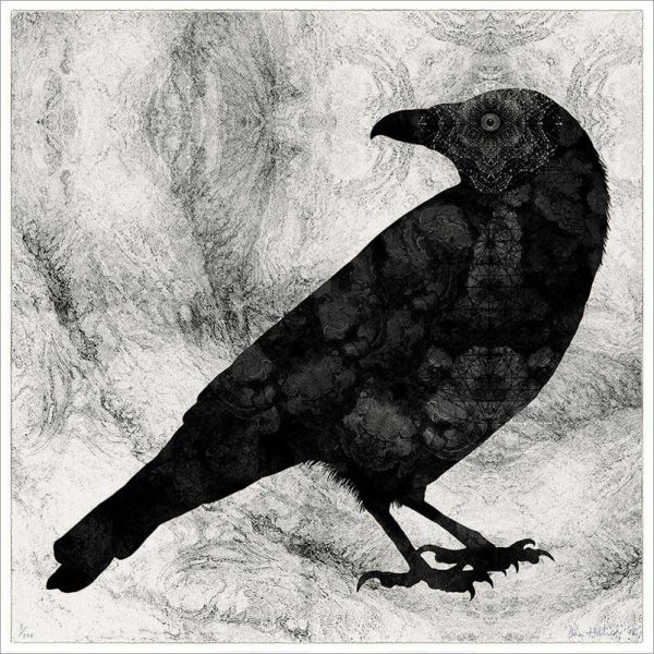 Dan Hillier | Raven | Fine Art & Contemporary Prints | Interiors | Books